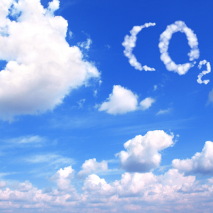 Por una economía baja en CO2