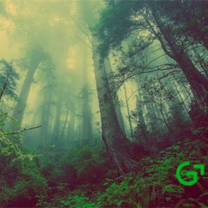 Sicasoft participa en los paneles técnicos del Grupo Español de Crecimiento Verde
