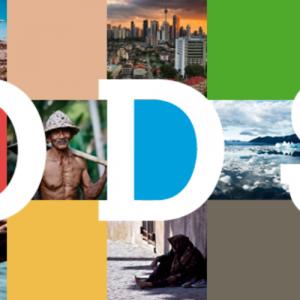 Los ODS en el punto de mira de los CEOs