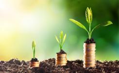 ¿Por qué la información no financiera está creciendo en valor sobre la financiera?